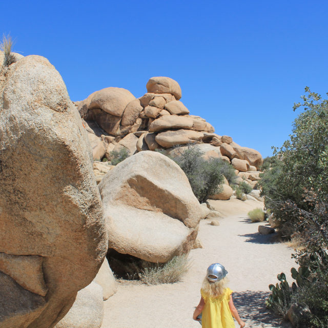 Joshua Tree was otherworldly and magical and sweltering and jawhellip